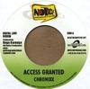 ACCESS GRANTED/LET JAH LEAD THE WAY