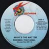 WHAT`S THE MATTER/DUB MIX